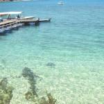 Pakej Pulau Gemia 2017