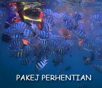 Pakej Perhentian 2D1N 2021 (PAKEJ LENGKAP RM230)